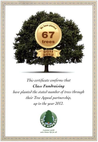 Environment - Planting trees